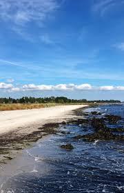 si e t ision vélo au danemark s épuiser 3 jours au vent