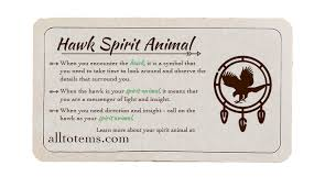 hawk meaning and symbolism all totems spirit animal meanings and