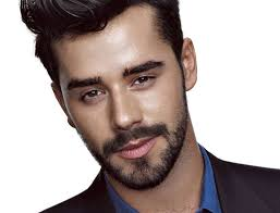 hairstyles that go with beards facial hair styles different types