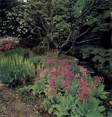 Shade Garden Ideas Bog Covers For Shade Garden Ideas Howstuffworks