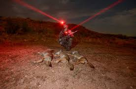 wicked hunting lights amazon wicked lights 79 photos 129 reviews sports recreation 1517