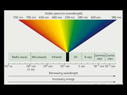 Physics Of Light The Physics Of Light In Fluorescent Diving And Photography