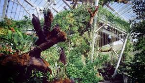 Ohio Botanical Gardens Cleveland Botanical Garden Things To Do Cleveland Ohio