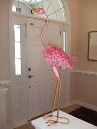 1222 best flamingo s images on pink flamingos