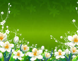 Flower Wallpaper Green Flower Wallpaper Wallpapersafari