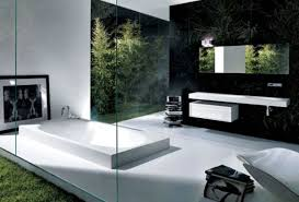 varnished wooden base cabinets modern small bathroom design