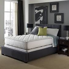 Serta Master Sleeper Crib And Toddler Mattress Serta Sleeper Presidential Suite Ii Plush Mattress Set