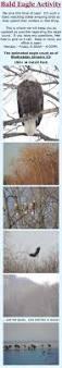 506 best minnesota images on pinterest minnesota lake superior