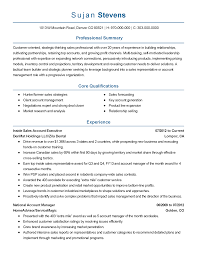 Inside Sales Resume Example by 100 Sales And Marketing Professional Resume Sales Training