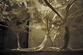 beautiful and luminous tree installation tom price series of
