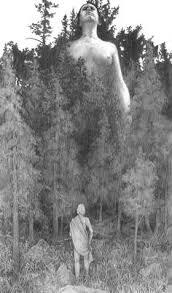 paul schaub rowing alone 1962 magic transistor on