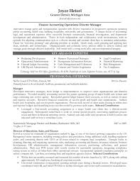 Sample Resume For Finance Executive by Sample Finance Resumes Chief Finance Officer Resume Sample Skill