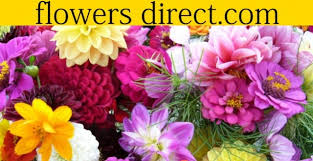 Discount Flowers 12 Discount At Flowers Direct
