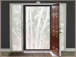 etched glass door front doors with frosted glass examples ideas u0026 pictures