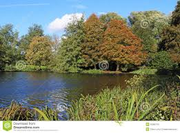 early autumn on the river thames in berkshire stock photo