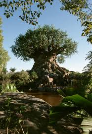 tree of life tree of life disney u0027s animal kingdom discount tickets