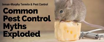 news and blog updates from inman murphy termite u0026 pest control