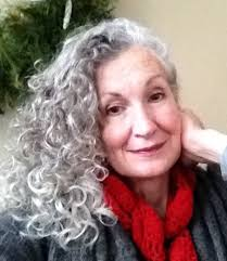 grey streaks in hair amazing grays gallery of silver sages