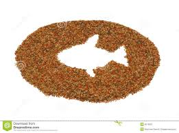 pet fish food stock photos image 8013933