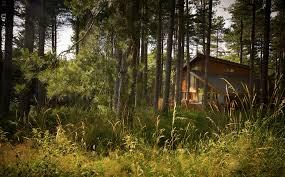 woodland cabins u0026 lodges uk the very best selection of woodland