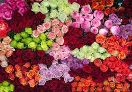 Wholesale Fresh Flowers Tennessee Wholesale Florist U2013 Fresh Cut Flowers And Hard Goods