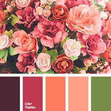 coral color coral color color palette ideas