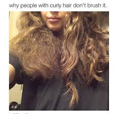 Frizzy Hair Meme - how to get rid of frizzy hair at home frizzy hair shoulder