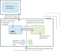 co culture systems and technologies taking synthetic biology to