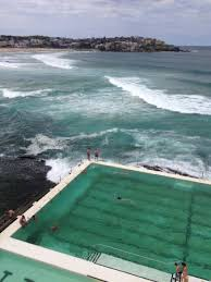 Iceberg Dining Room And Bar - view of bondi beach from icebergs bar picture of icebergs