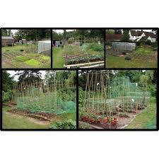 a home vegetable garden plan for a no cost organic garden