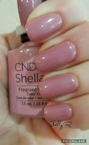 best 25 shellac nail colors ideas on pinterest neutral wedding