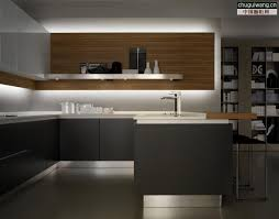 Modern European Kitchen Cabinets by Laorosa Design Junky Contemporary Modern Kitchens Pics With Euro