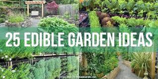 Garden Ideas Perth Edible Garden Design Edible Garden Design Perth Autouslugi Club