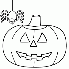 daring jumping spider coloring printable pages
