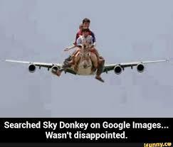 Funny Donkey Memes - 41 hilarious donkey memes images gifs pictures photos picsmine