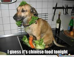 Dog Cooking Meme - chinese food memes best collection of funny chinese food pictures
