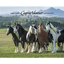 afghan hound calendar 2015 amazon com 2015 animals calendars books