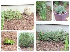 Kitchen Herb Garden Design Use One Of These Four Simple Garden Designs To Grow Kitchen Herbs