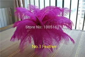 Ostrich Feather Centerpieces Wholesale by Compare Prices On Table Ostrich Feather Online Shopping Buy Low