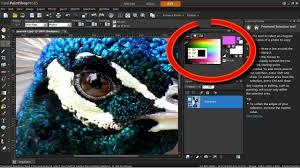 the color changer tool in corel paintshop pro x5 youtube