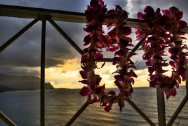 how to say happy thanksgiving in hawaiian in honor of lei day everything you never knew about leis huffpost