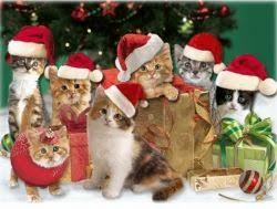 best 25 free animated ecards ideas on pinterest ecards for free