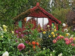 cottage garden flowers colombia flowers cottage garden beautiful views wallpapers