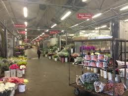 Flower Shops In Valencia Ca - 100 flower delivery santa clarita ca sunny siesta by