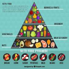 infographic about food pyramid vector free download