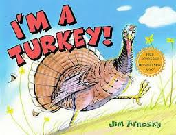 the 25 best turkey facts ideas on about turkey facts