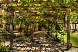 California Missions  Of The  Missions Are Found In Central - Backyard vineyard design