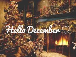 hello christmas tree hello december image 1652459 by aaron s on favim