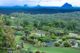 World Botanical Gardens Maleny Botanic Gardens And Bird World Australia Photography By