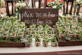 succulent wedding favors fabulous wedding favors for eco friendly couples our organic wedding